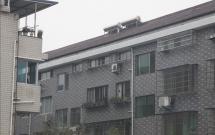 大众新村(万家福房产中介2117709)