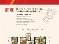 江泰•国际星城 豪庭 C3